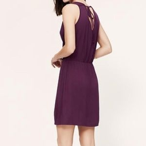 Ann Taylor Loft Size 4 Orange Dress